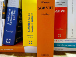 08.06.2021 – Die Digitale Fachtagung zur SGB VIII- Reform: